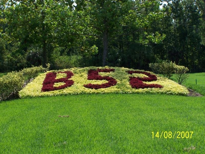 Commercial Flower Bed Design
