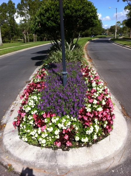 Commercial Flower Bed ...