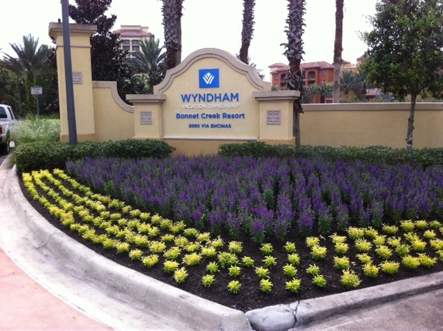 Commercial Flower Bed Design Winter Park Fl Orlando Fl