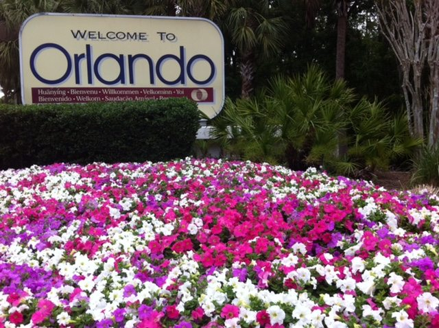 OIA Welcome to Orlando Petunias